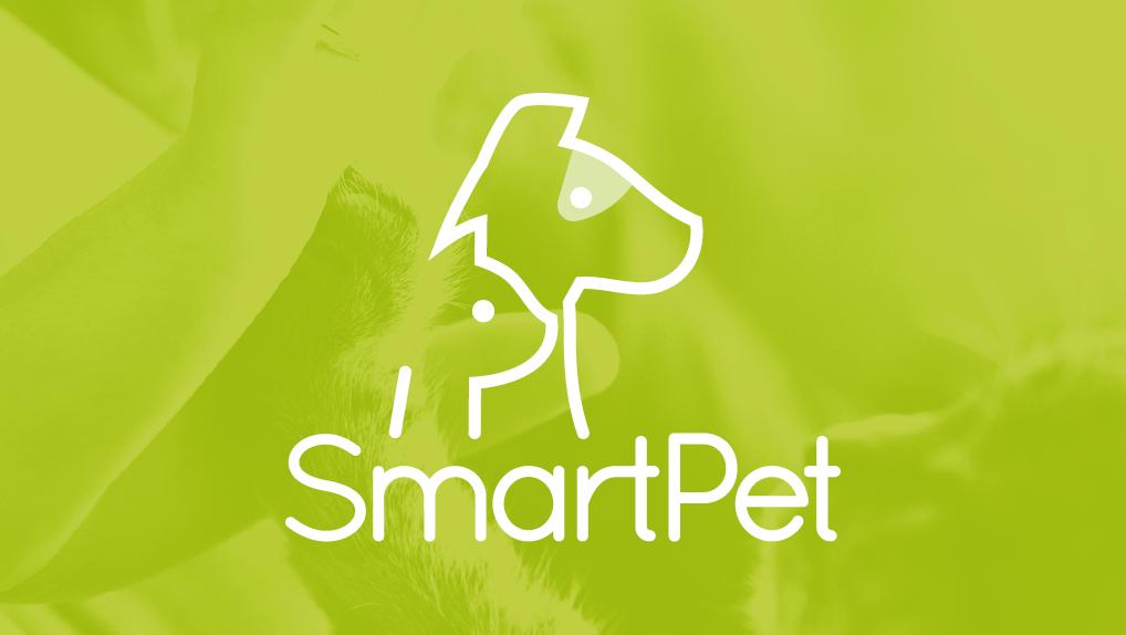 Przychodnia Weterynaryjna SmartPet w Katowicach
